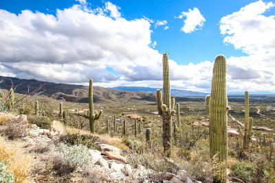 Tucson Residential Lots & Land For Sale: 12265 E Coronado Road