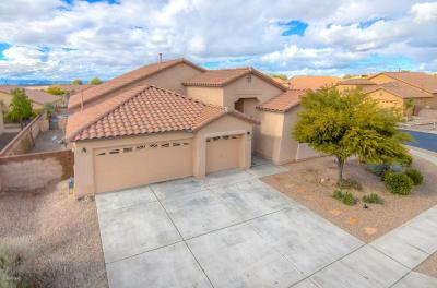 Marana Single Family Home For Sale: 12921 N Cenozoic Drive
