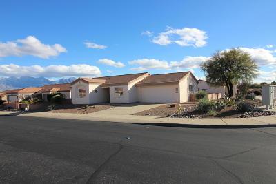 Green Valley  Single Family Home For Sale: 4391 S Desert Jewel Loop
