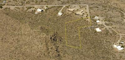 Tucson Residential Lots & Land For Sale: 5101 S Gila Avenue