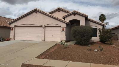 Tucson Single Family Home For Sale: 3852 W Orion Street