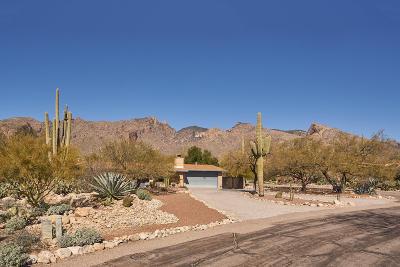Tucson Single Family Home Active Contingent: 3785 E Marble Peak Place