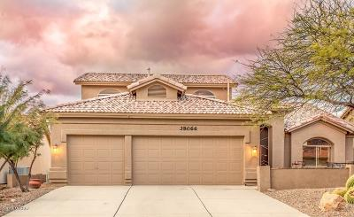 Single Family Home For Sale: 38066 S Desert Highland Drive