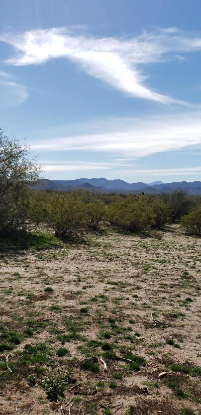 Residential Lots & Land For Sale: 16750 W Flybuoy Ranch Road