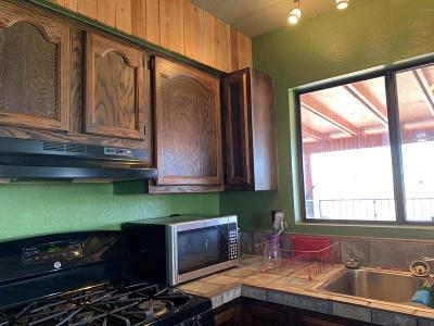 Rio Rico Single Family Home For Sale: 526 Camino Ramanote