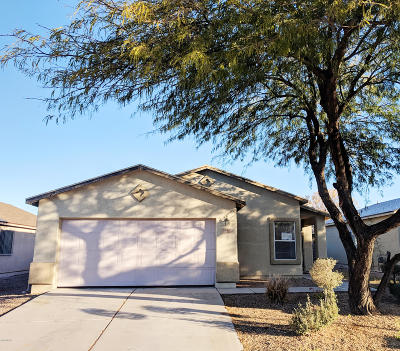 Pima County, Pinal County Single Family Home For Sale: 2743 E Vuelta Rio Viejo