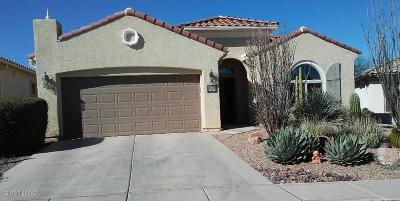 Sahuarita Single Family Home For Sale: 14240 S Camino Burgos