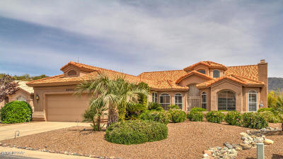 Single Family Home For Sale: 38451 S Desert Bluff Drive