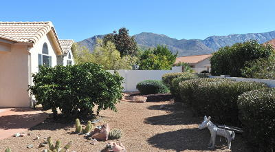 Saddlebrooke Single Family Home Active Contingent: 65749 E Mesa Ridge Court