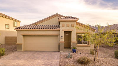Marana Single Family Home For Sale: 9013 W Rolling Springs Drive