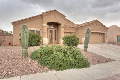 Tucson Single Family Home Active Contingent: 5094 N Louis River Way