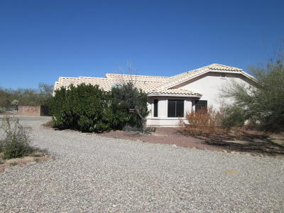 Sahuarita Single Family Home Active Contingent: 17540 S Camino Confianza