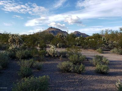 Tucson Single Family Home For Sale: 3901 S Calgary Avenue