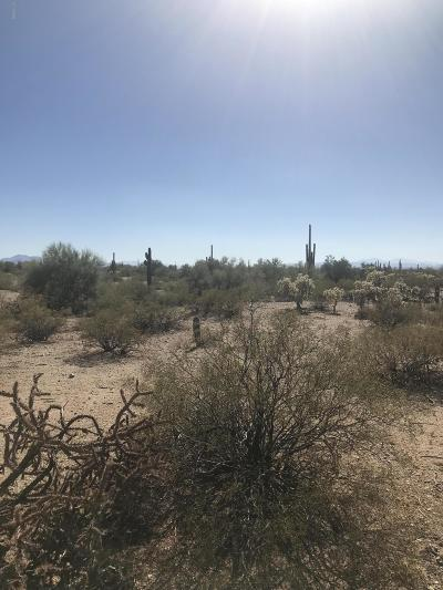 Residential Lots & Land For Sale: 39000 S Cattle Tank Road