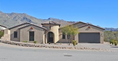 Tucson Single Family Home For Sale: 9339 E Spur Crossing Place