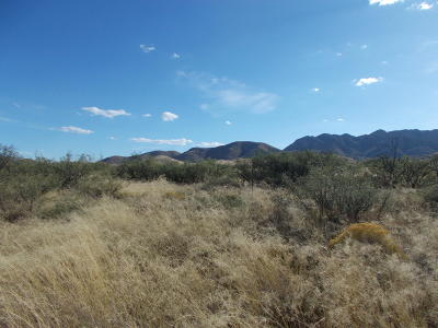 Cochise Residential Lots & Land For Sale: 1200 W Ironwood Road