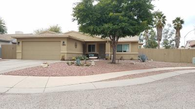 Tucson Single Family Home Active Contingent: 5982 S Pin Oak Drive