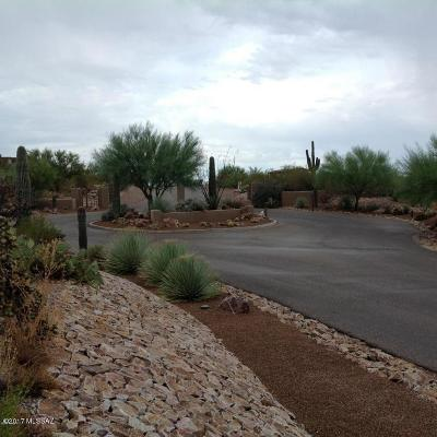 Residential Lots & Land For Sale: 3898 S Saguaro Monument Place #2