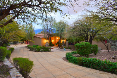 Oro Valley Single Family Home For Sale: 14564 N Quiet Rain Drive