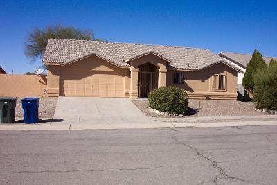 Single Family Home For Sale: 9575 E Banbridge Street