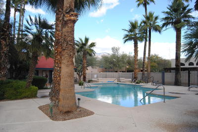 Pima County Condo Active Contingent: 4281 N River Grove Circle #219