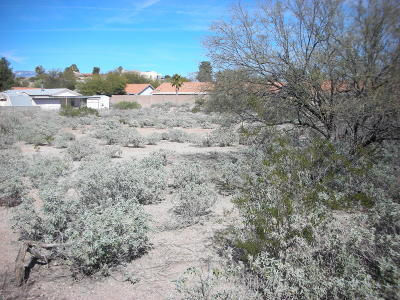 Tucson Residential Lots & Land For Sale: S Pantano Parkway #3