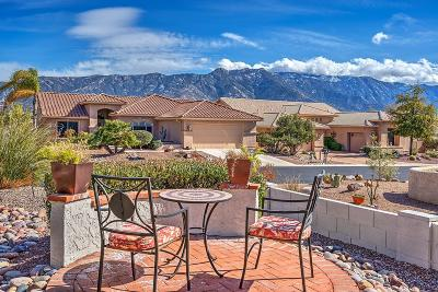 Tucson Single Family Home For Sale: 38826 S Rock Wood Drive