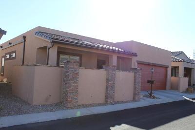 Sahuarita Single Family Home For Sale: 1339 W Vuelta Oruga