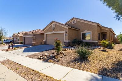 Sahuarita Single Family Home For Sale: 1335 W Calle Luis Maria