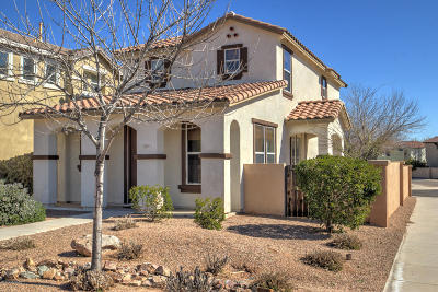 Pima County Single Family Home Active Contingent: 290 W Paseo Celestial