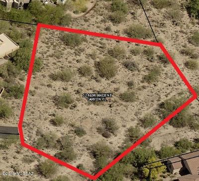 Residential Lots & Land For Sale: 1246 W Ancient Canyon Place #89