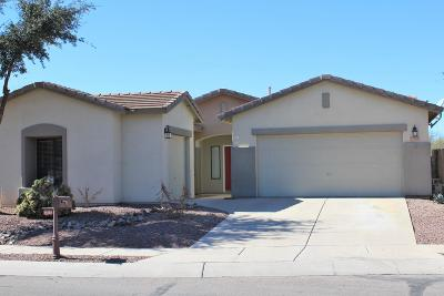 Sahuarita Single Family Home Active Contingent: 15180 S Avenida Rancho Largo