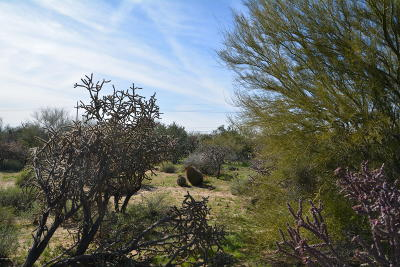 Tucson Residential Lots & Land For Sale: Pecos Way #1