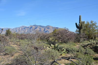 Tucson Residential Lots & Land For Sale: Pecos Way #2