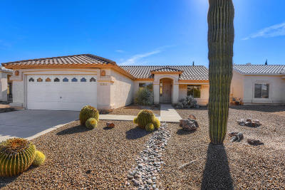 Tucson Single Family Home For Sale: 7243 W Deserama Drive