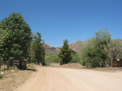 Cochise County Single Family Home For Sale: 287 S Cochise Stronghold R Road