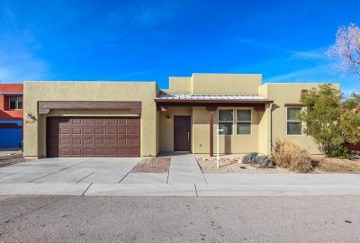Tucson Single Family Home For Sale: 10547 E Marchetti Loop