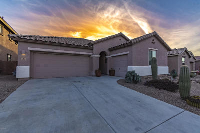 Marana Single Family Home For Sale: 3451 W Tailfeather Drive