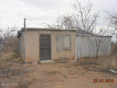 Cochise County Single Family Home For Sale: 4636 Fort Grant Road