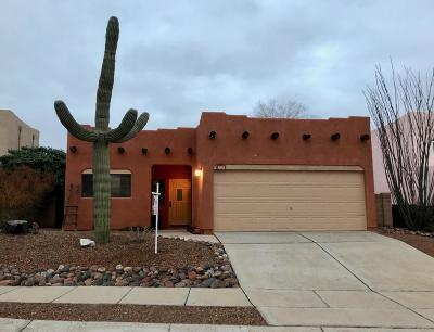Tucson Single Family Home For Sale: 9300 N Jessy Lane