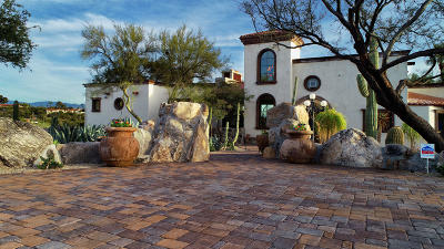 Tucson Single Family Home For Sale: 2700 E Camino A Los Vientos