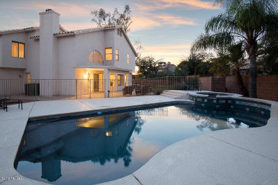 Oro Valley Single Family Home For Sale: 11390 N Copper Creek Drive