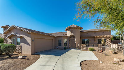 Marana Single Family Home For Sale: 12961 N High Hawk Drive