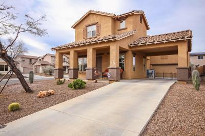 Sahuarita Single Family Home For Sale: 165 W Calle Cajeta