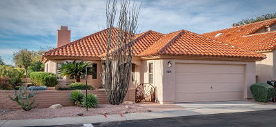 Tucson Single Family Home For Sale: 4164 E Hawks Wing Drive
