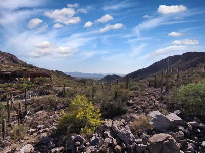 Residential Lots & Land For Sale: 4320 Cush Canyon Loop W #118