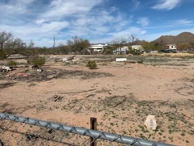 Tucson Residential Lots & Land For Sale: 8021 S Settler Avenue