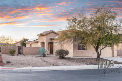 Marana Single Family Home For Sale: 12217 N Gadwall Drive