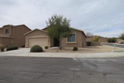 Single Family Home For Sale: 7108 S Placita Atoyac