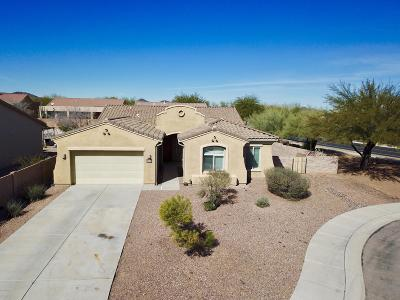 Marana Single Family Home For Sale: 8021 N Coltrane Lane